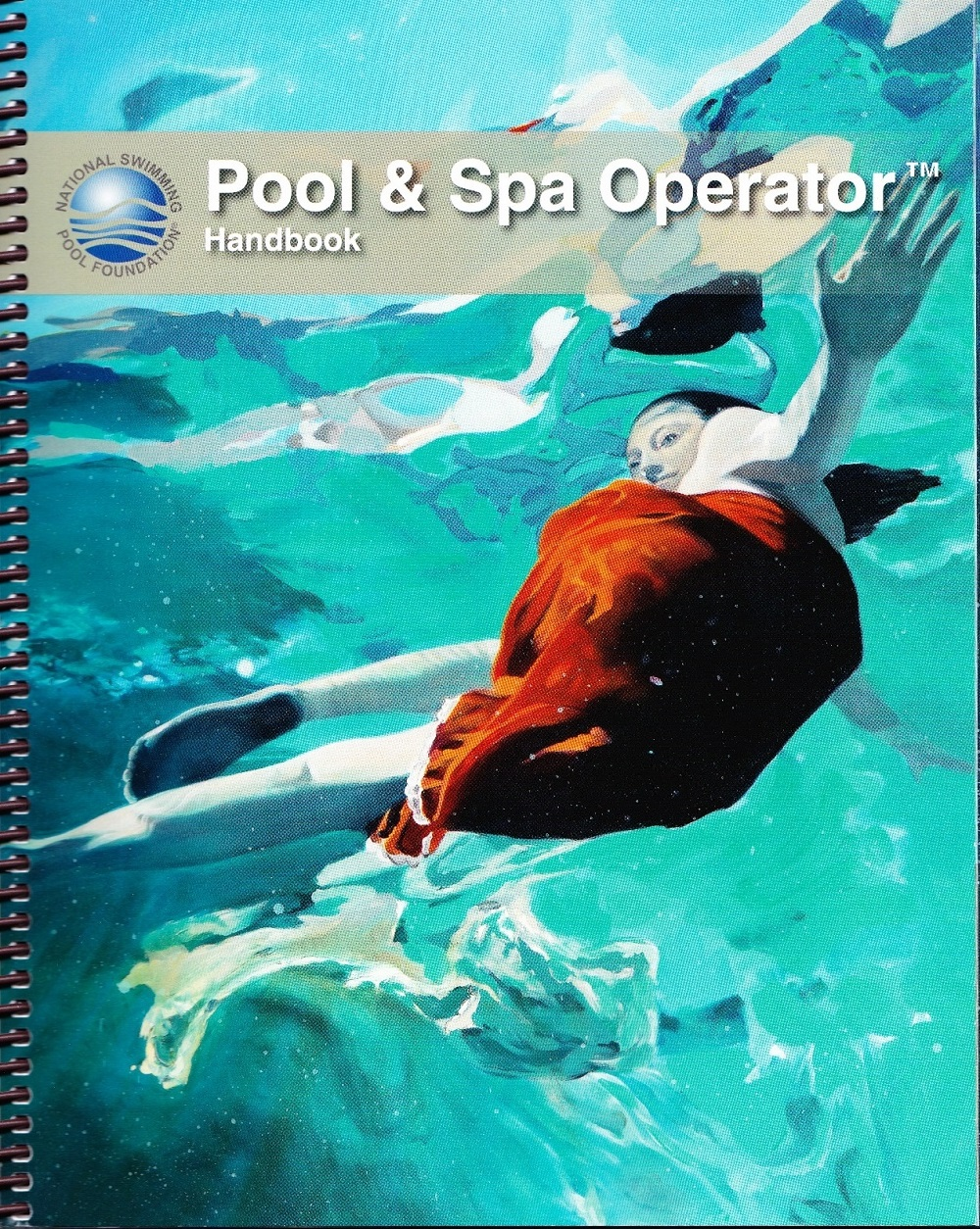 Florida Swimming Pool Spa Servicing Contractor